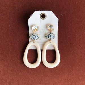 Anthropologie Schaffer Resin Drop Earrings